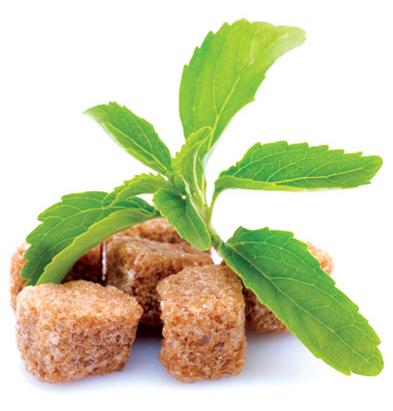 Tổ yến được chưng với đường từ cây cỏ ngọt có lợi cho sức khỏe
